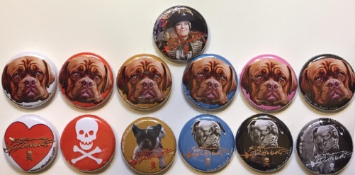 badges, pack of 13